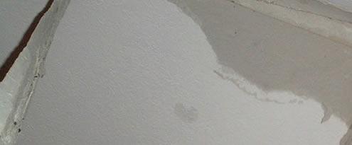 dakreparatie lekkage water plas
